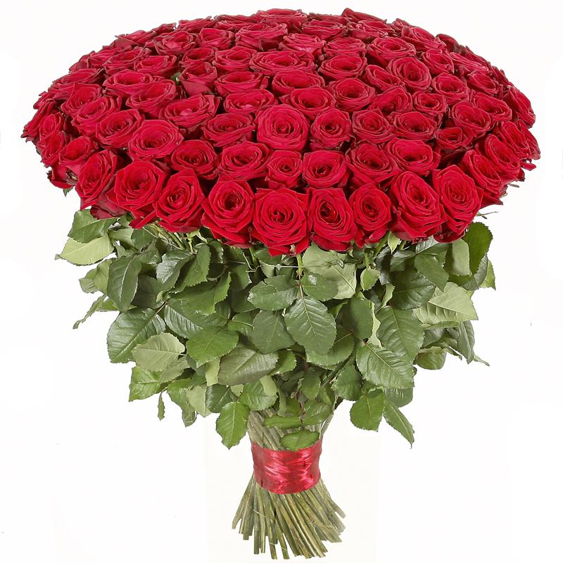 букет розы самые красивые фото картинки лицевой стороне
